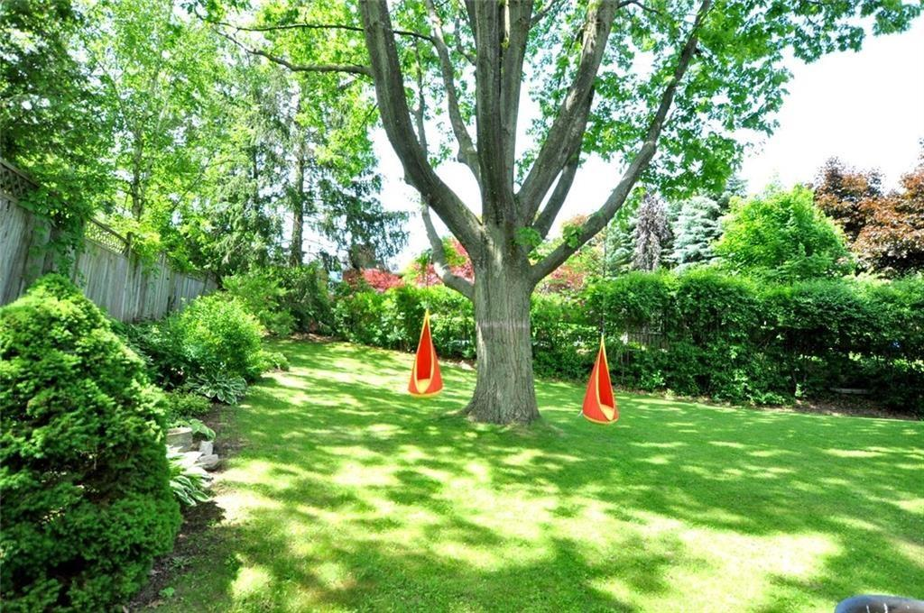241 Lloyminn Avenue - Backyard